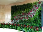 vertical garden ideas2